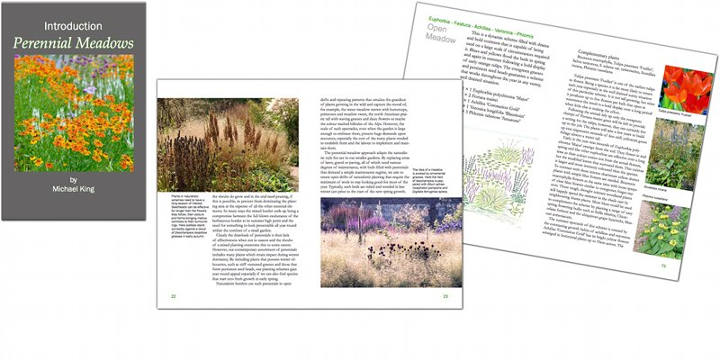 Introduction Perennial Meadows eBook