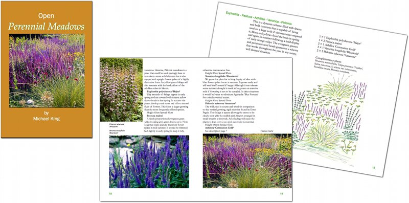 Open Perennial Meadows eBook