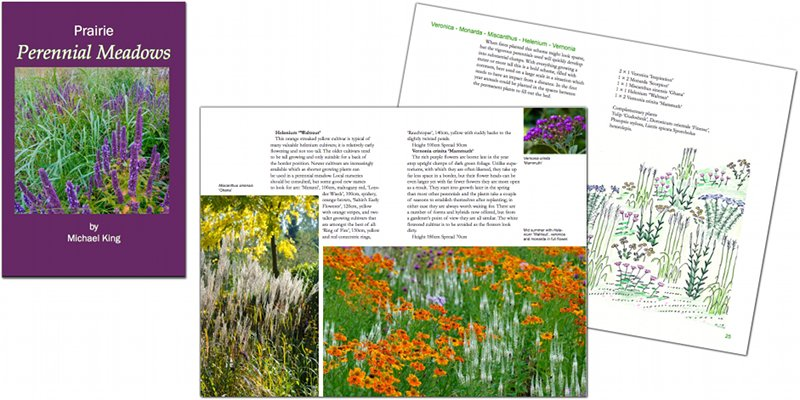 Prairie Perennial Meadows eBook