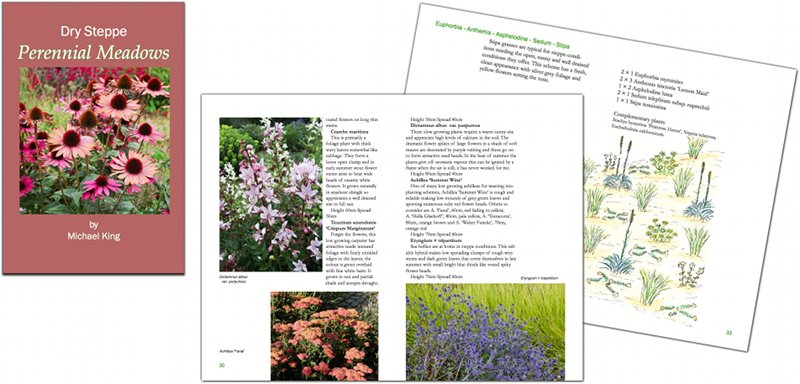 Dry Steppe Perennial Meadows eBook
