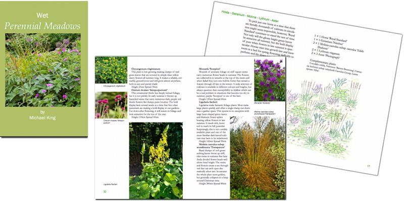 Wet Perennial Meadows eBook