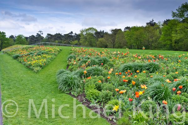 Perennial Meadows - Floriade 2012