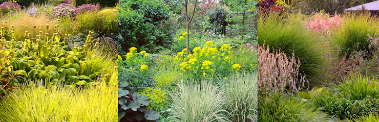 100 greatest gardening web sites in the world perennial for Grasses planting scheme