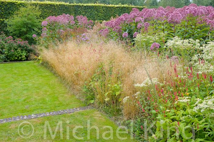 Oudolf Perennial Meadow