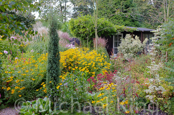 Naturalistic Planting with conifers