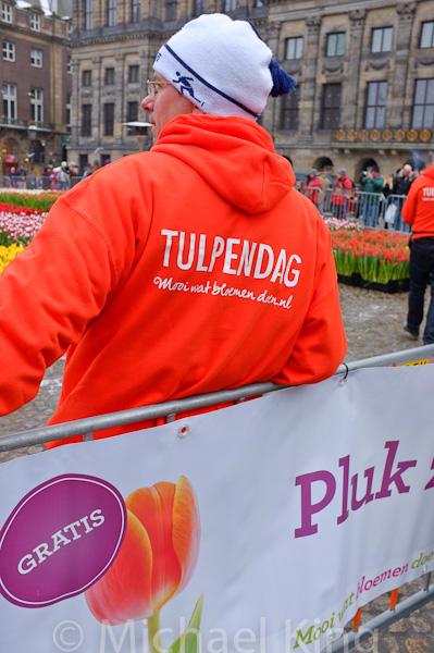 Tulpendag Amsterdam 2013