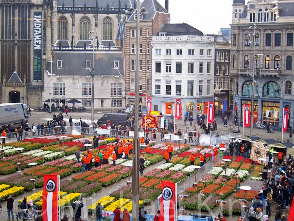 National Tulip Day Amsterdam 2013