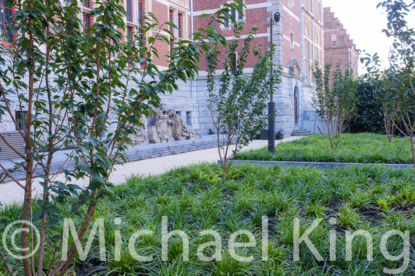 Part of the new planting scheme at Het Rijksmuseum, Amsterdam