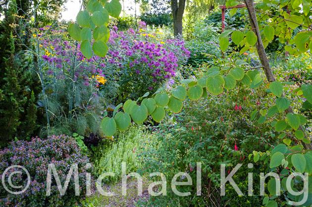 Amsterdam trial garden