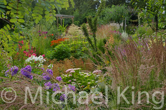 The July Garden filled with textures