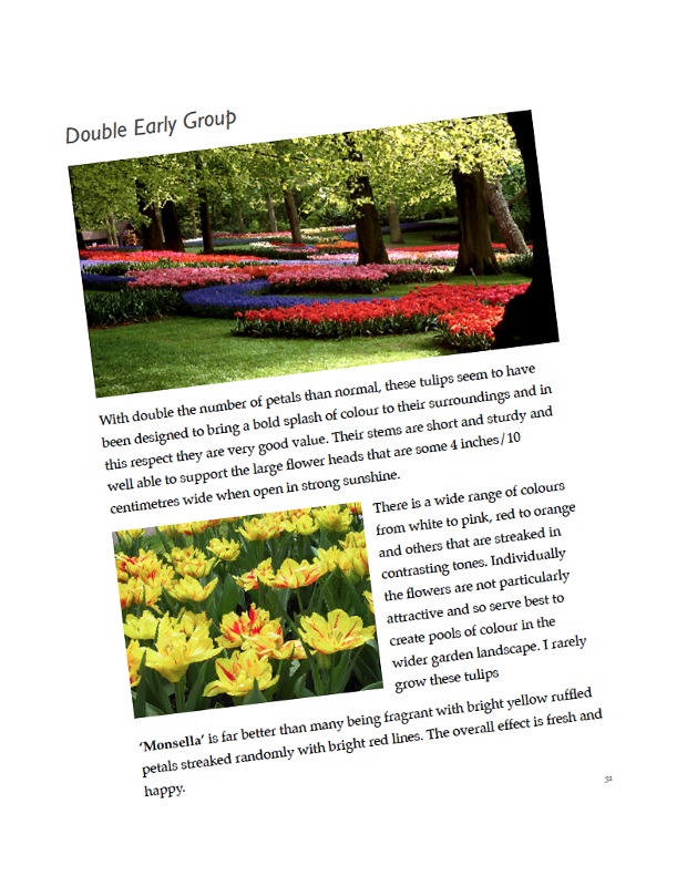 Tulips eBook