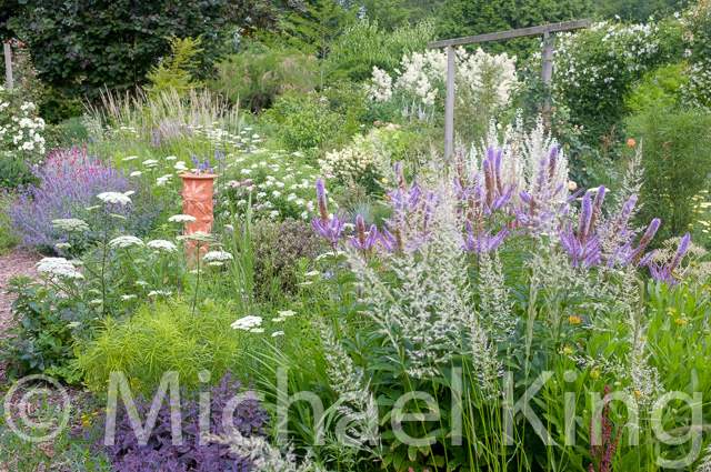 Mixed perennial meadow borders