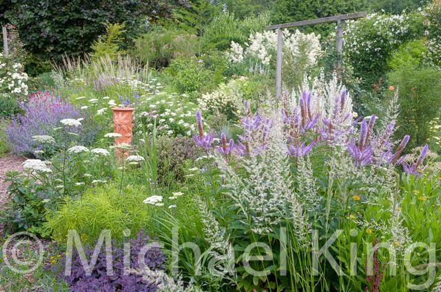 Mixed perennial meadow borders