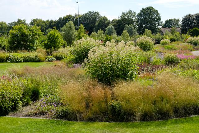Vlinderhof park in Utrecht