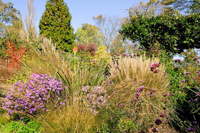 Perennial Garden Amsterdam