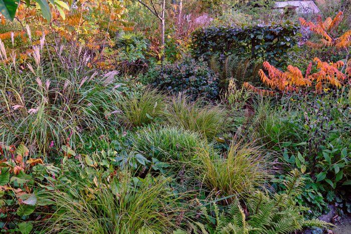 autum garden landscape