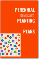 Perennial Planting Plans book cover